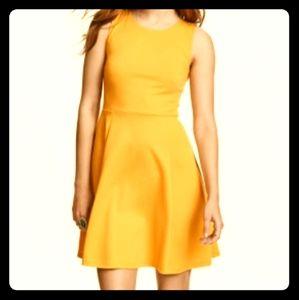 H&M sleeveless mustard yellow skater Dress